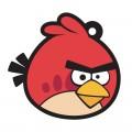 L019 - Ugly Bird